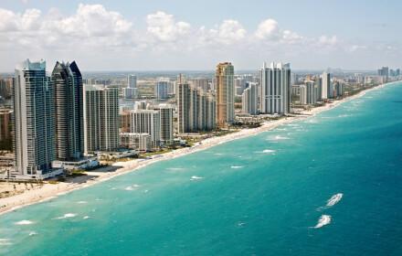 Kisi in Miami