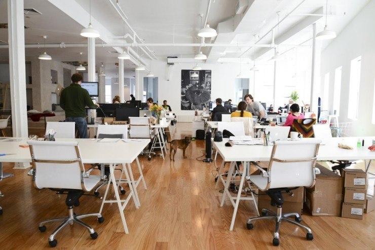 Barkbox Office New York 1