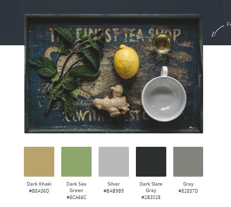 Beyond Paper Profit Advisors Color Pallet