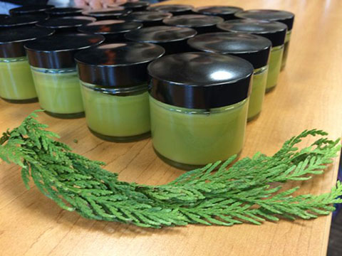 Teacher Training - Herbal Apothecary II: Topical Remedies for First Aid