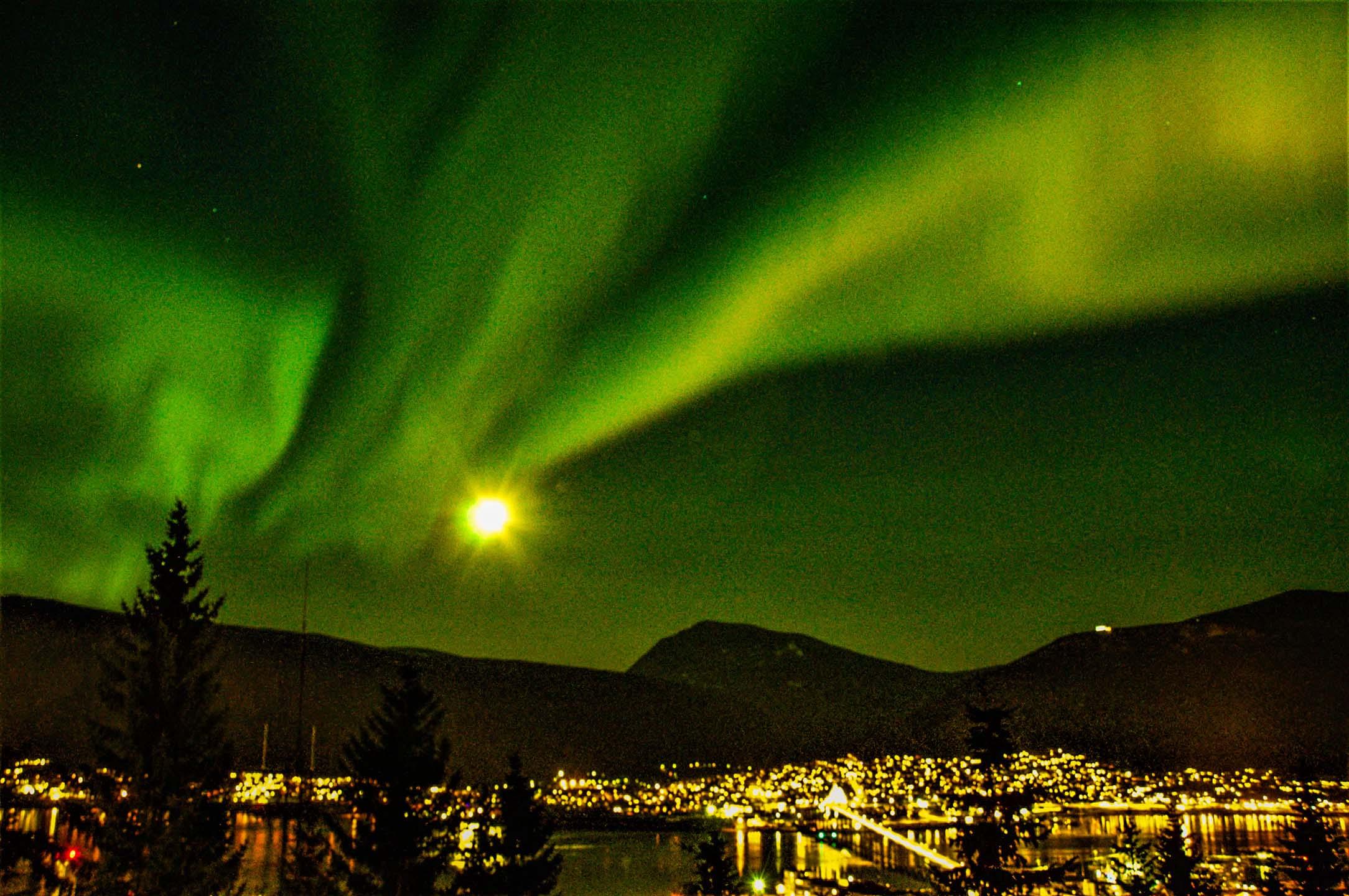Bli med Arctic Safari på en unik jakt medbussogturbåtetter det magiske nordlyset aurora borealis