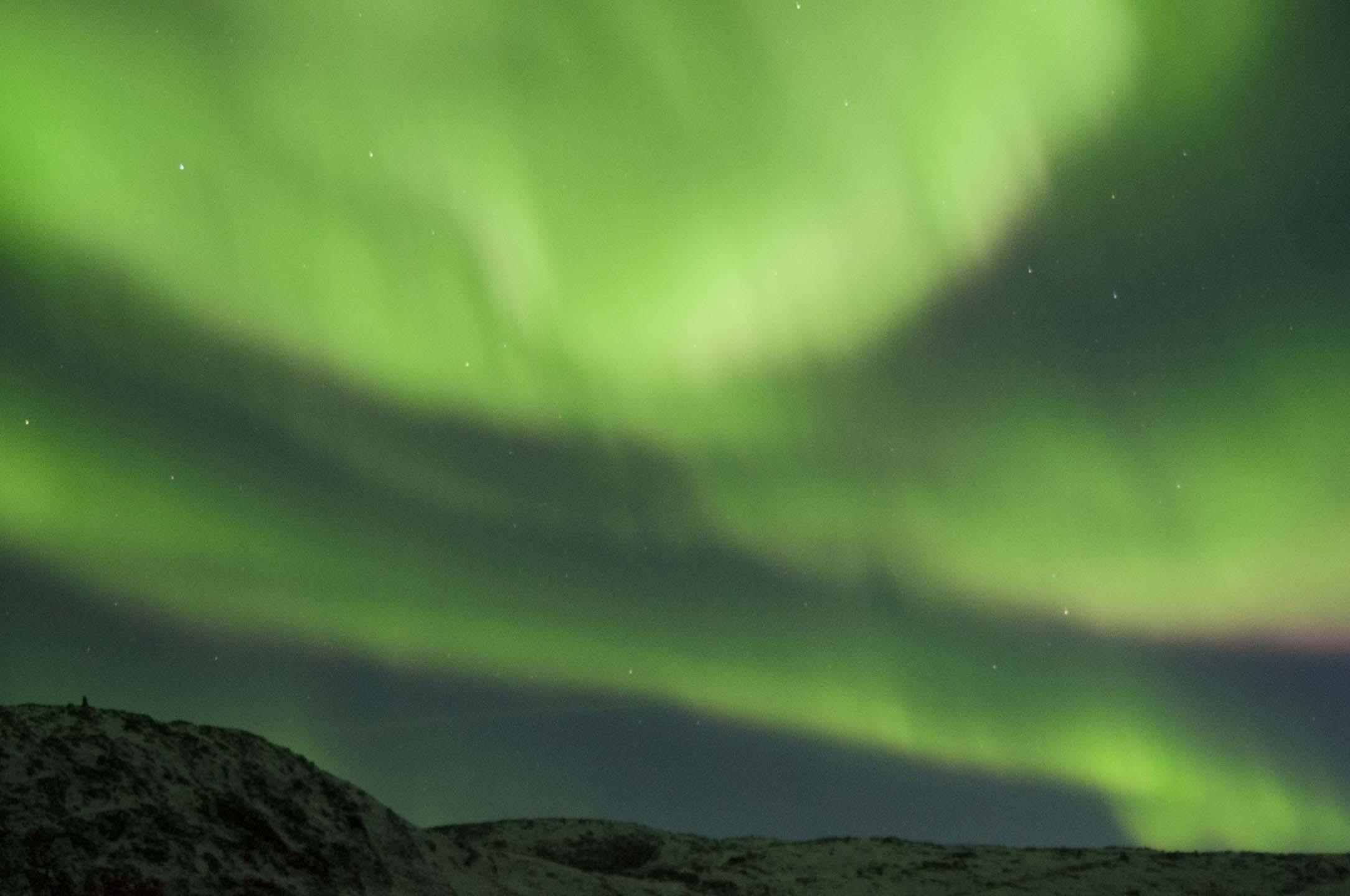 Unternehmen Sie mit Arctic Safari eine einzigartige Jagd mitautoundyachtauf das magische Nordlicht Aurora borealis.