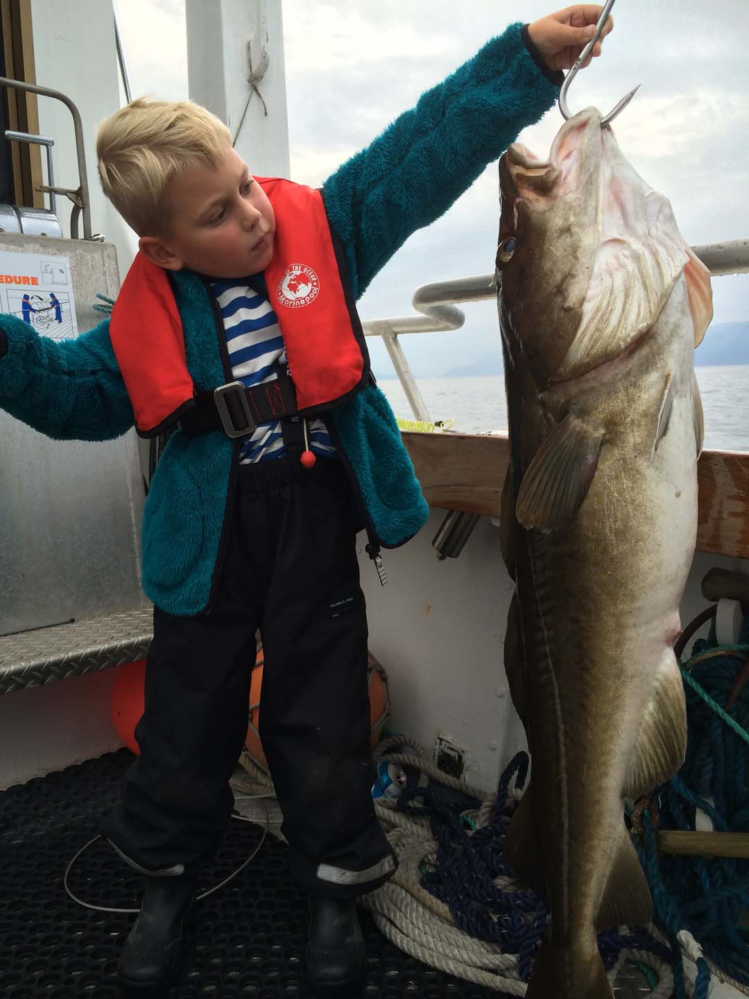 "Come along the M/V «BigFisher II"" on a lovely fishing trip in Tromsø"