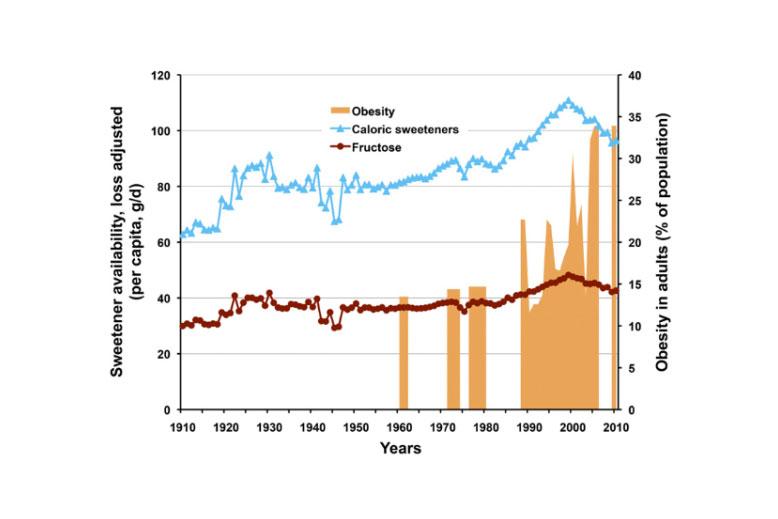 Množství přijaté fruktózy ve stravě v USA