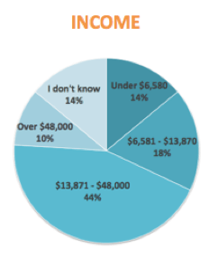 survey demographics income