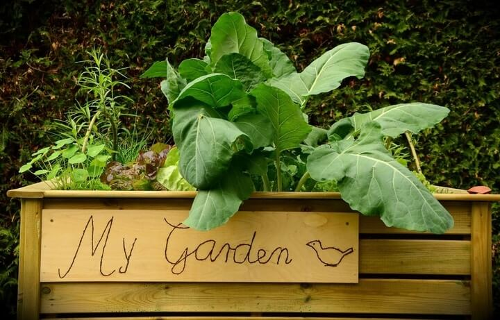 using raised flower beds when gardening