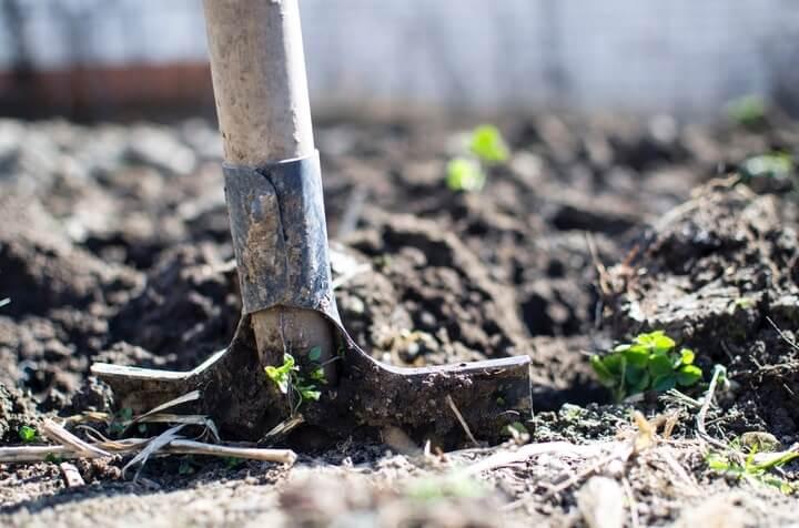 importance of equipment for elderly gardening