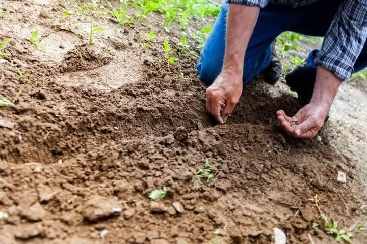 knee pad for gardening