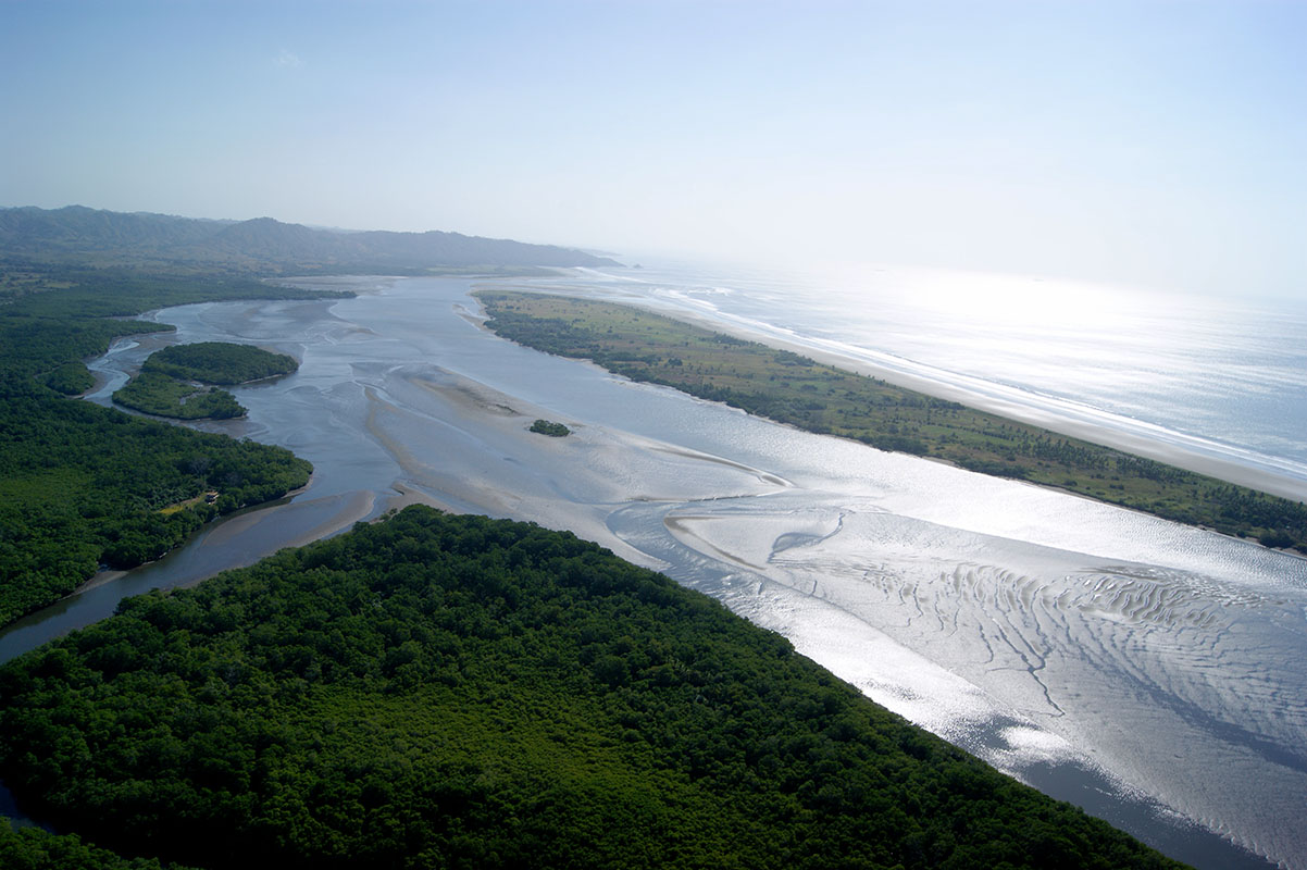 View on Isla Cana nature reserve with mangroves