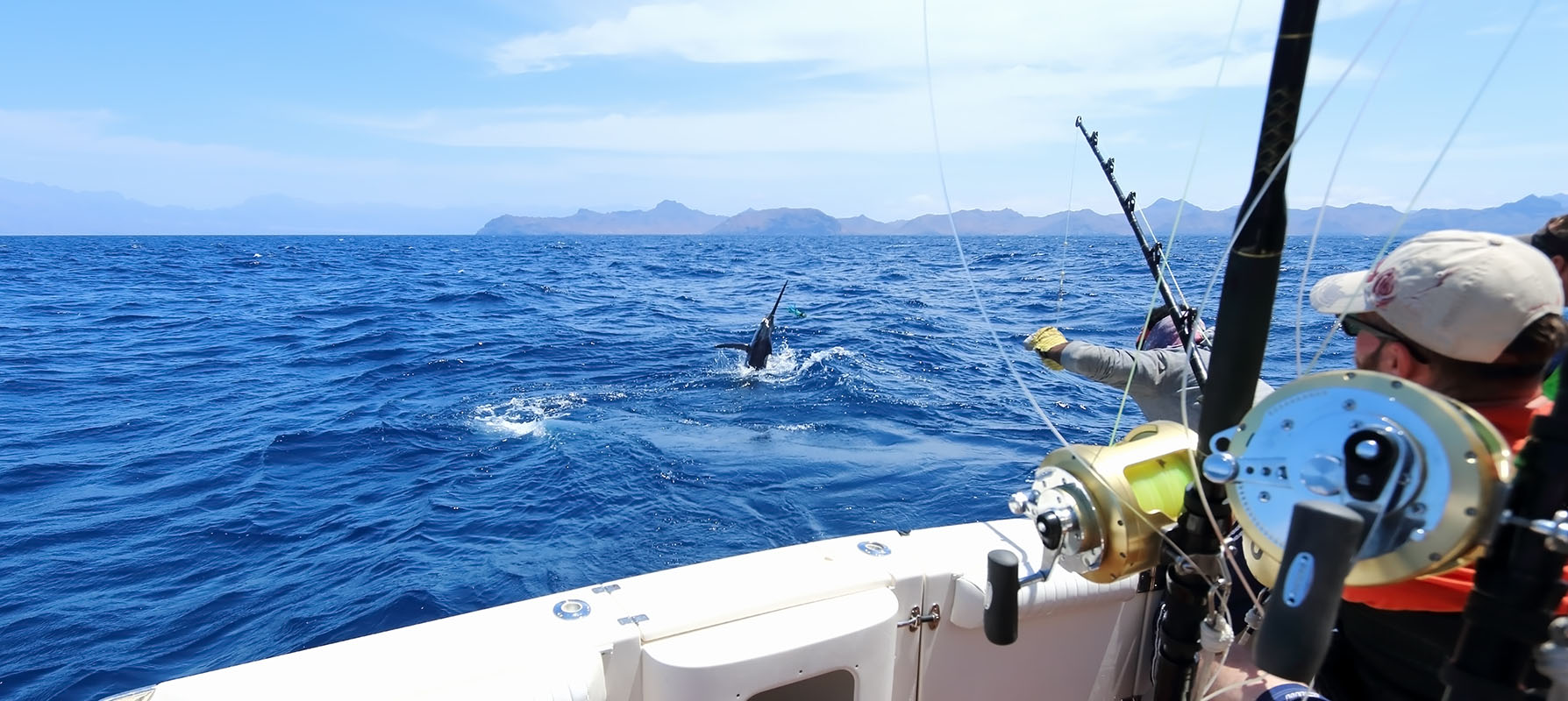 Fishing marlin from a boat