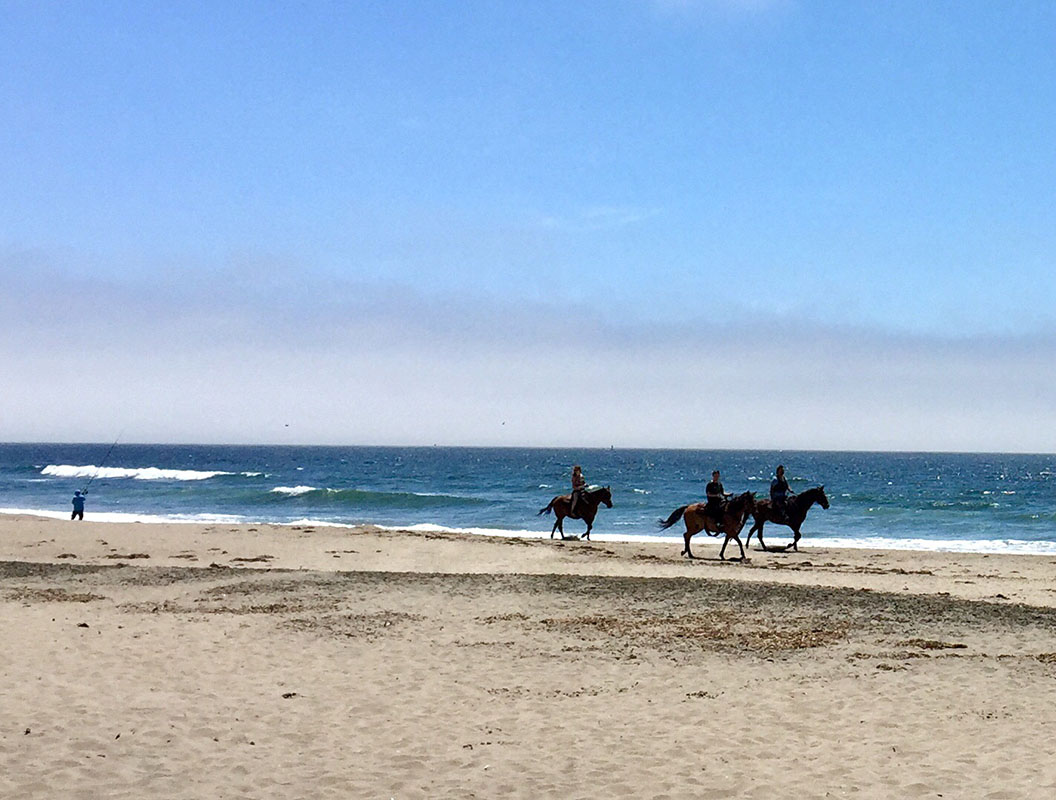 horseback ride on beach