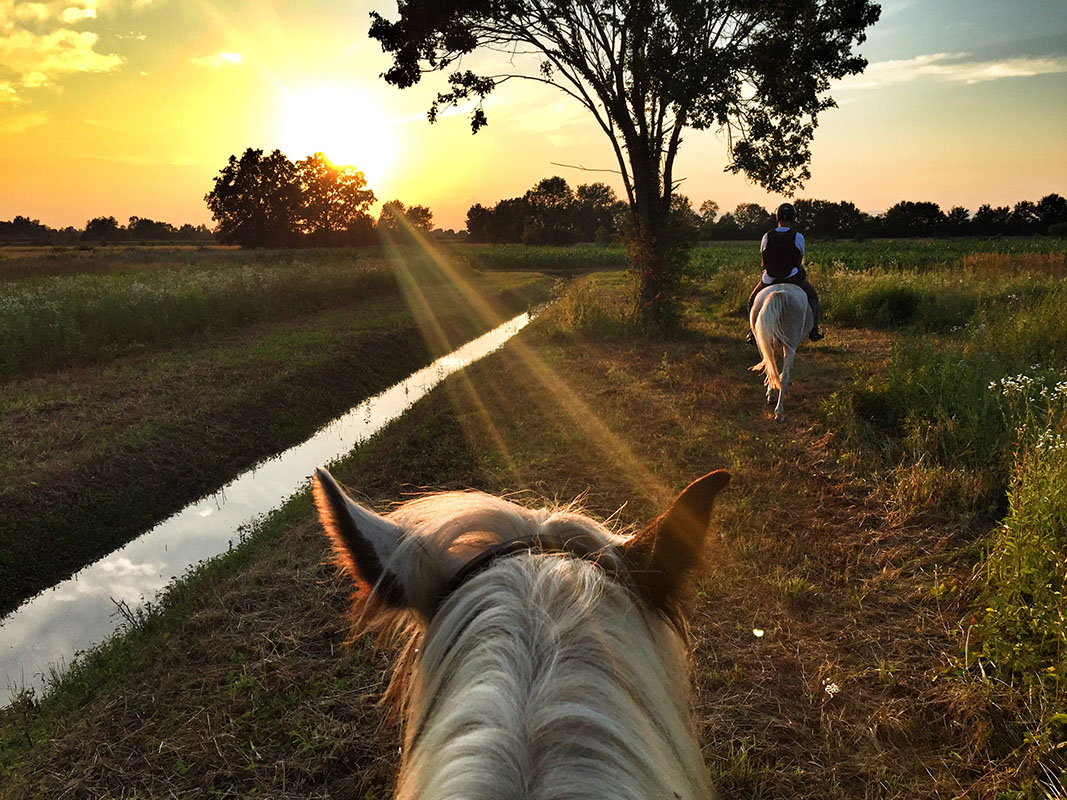 Two people riding horses at sunset