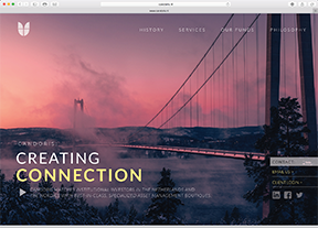Emerson Ward Web Design Concept