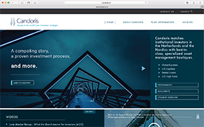 Emerson Ward Website Design Concept