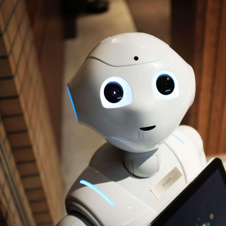 AI & Personalization