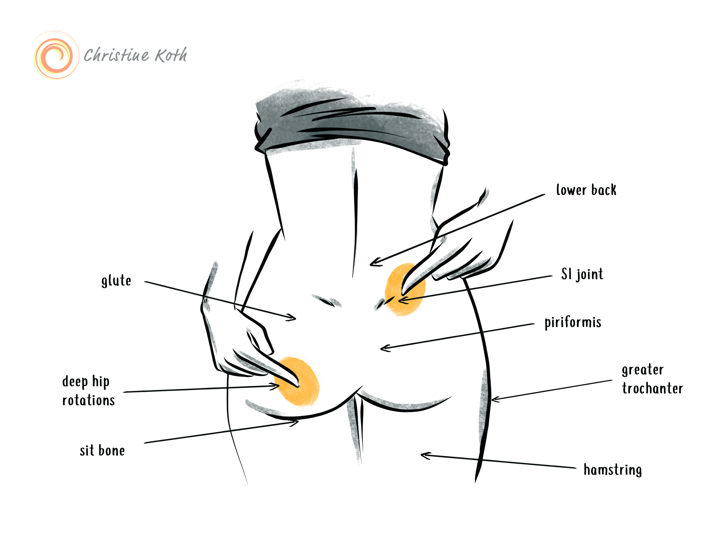 Find some of these opposing muscles on yourself