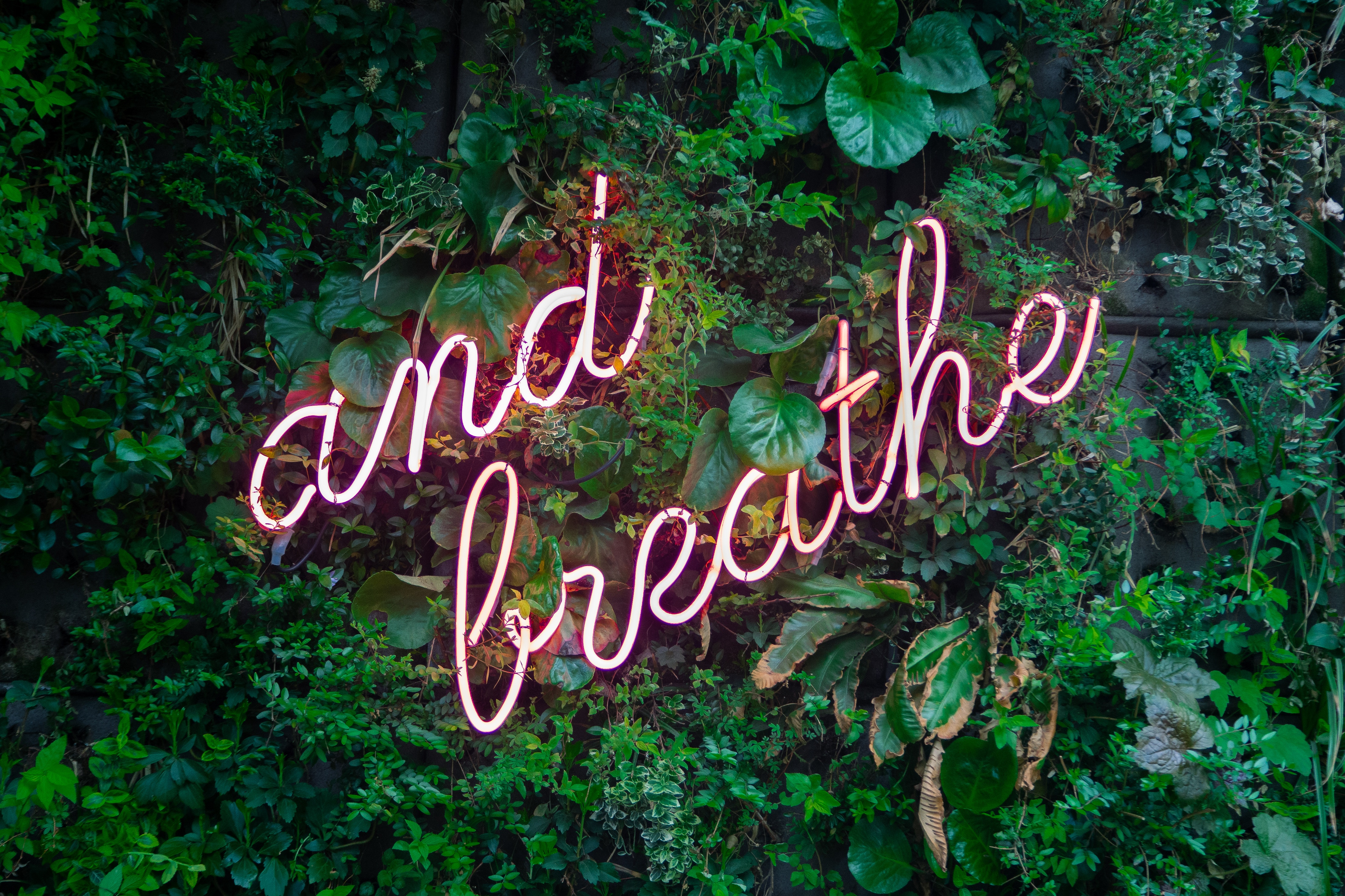 Neon lights saying: and breathe