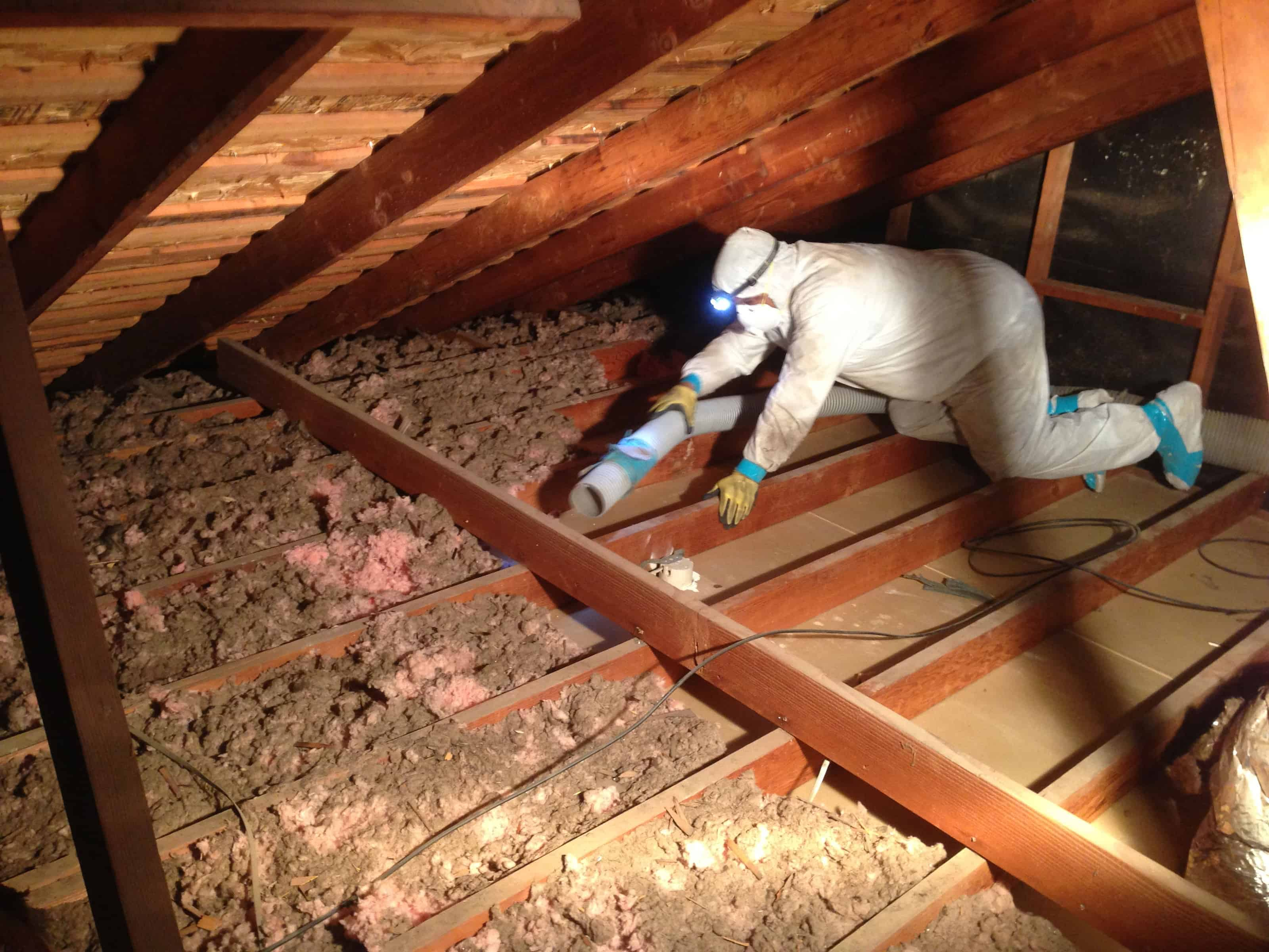 Attic Insulation Removal Ottawa Amp Gatineau