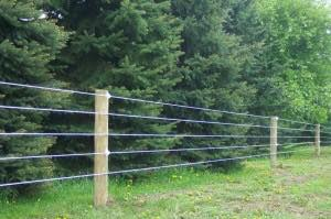 Poly Coat Fence