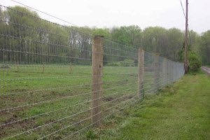 Woven Wire Cattle Fence
