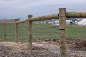 High Tensile Cattle Fence