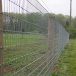 Woven Wire Alpaca Fence