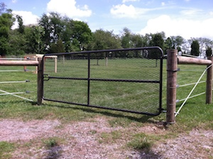 Expanded Metal Gate