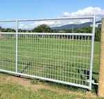Mesh Field Gates