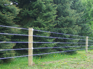 Poly Coat Fencing