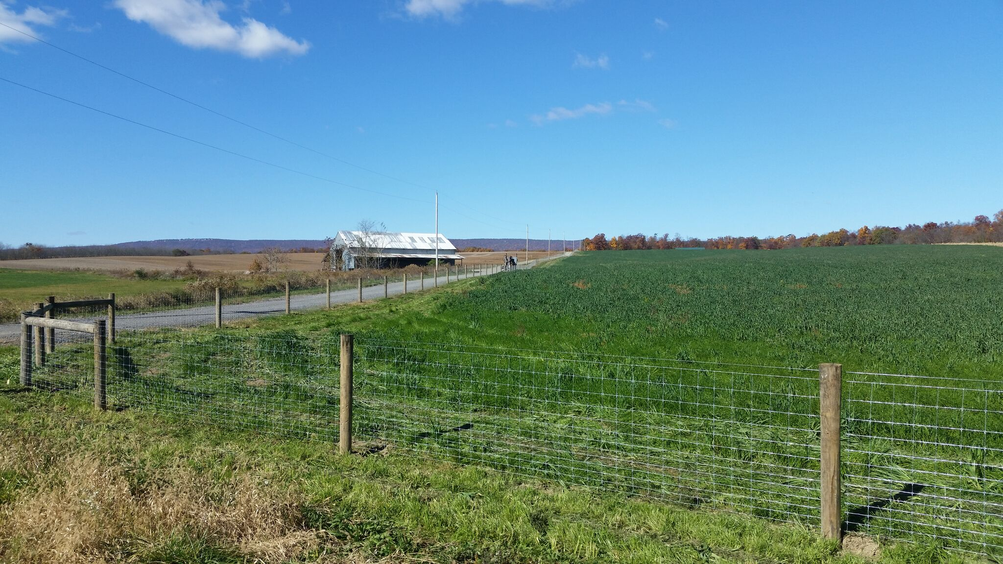 Shepherdstown, WV Fence Installation