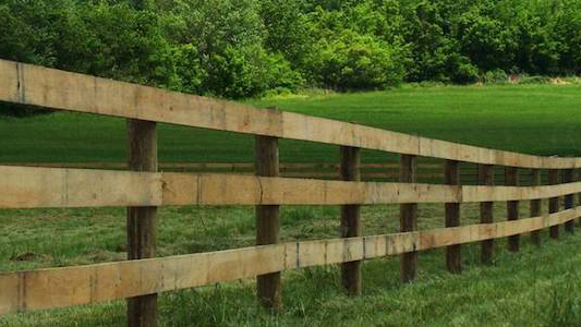 Horse Fence Installation Electric