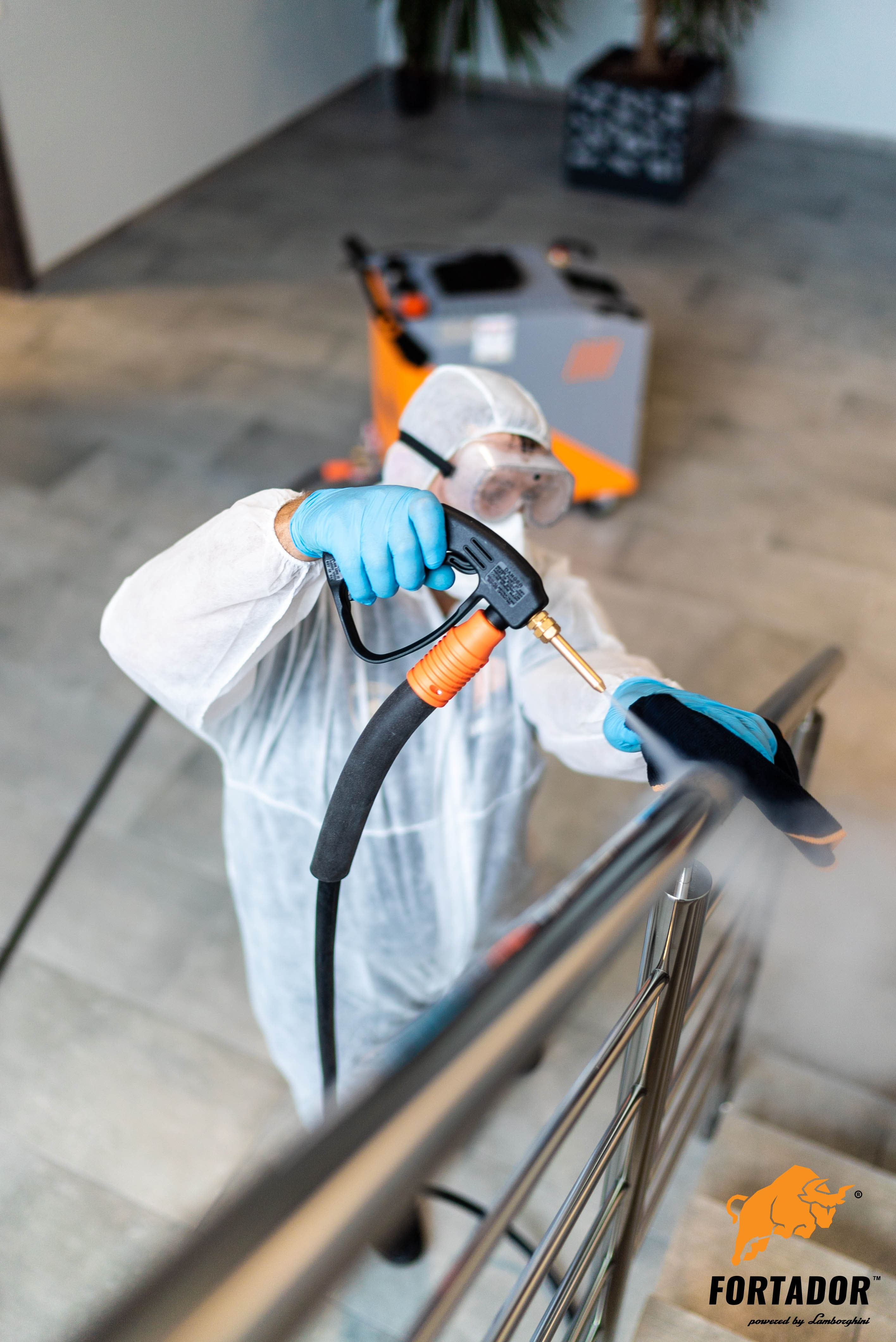 steam cleaner for disinfection