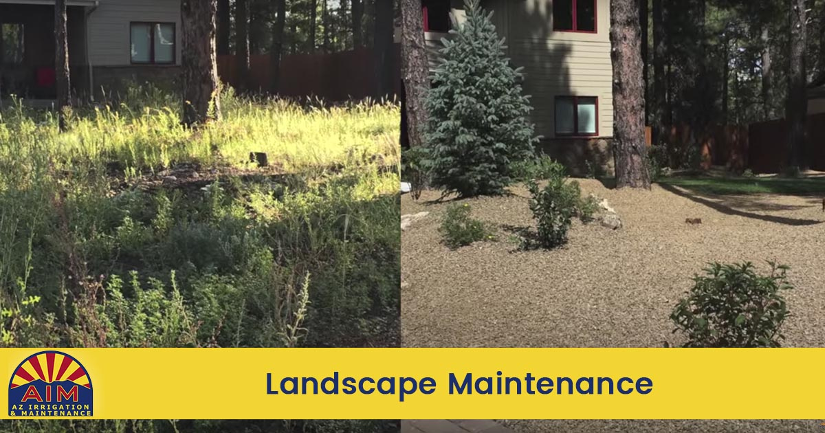Landscape Maintenance in Flagstone and Sedona AZ
