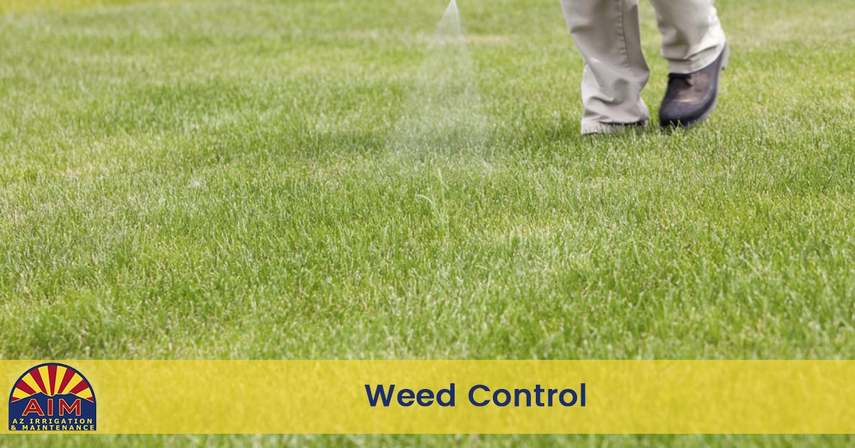 Flagstaff Weed Control Service