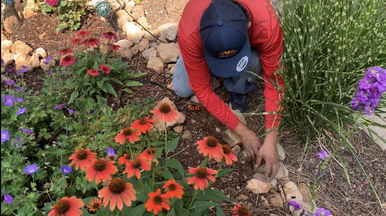 About AZ Irrigation and Maintenance