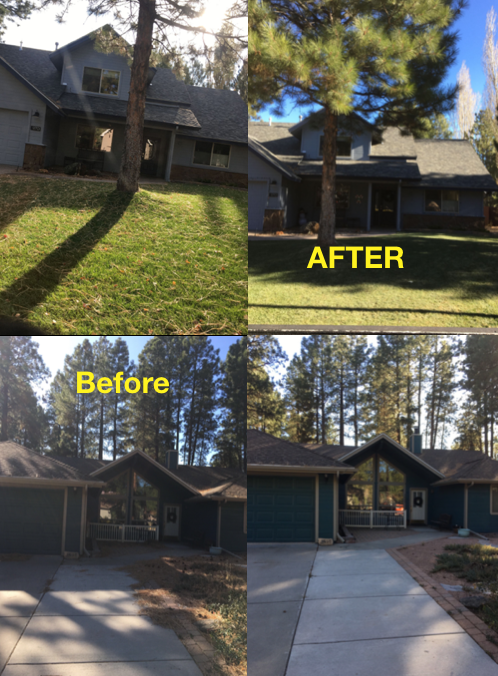 Landscape Maintenance Service in Flagstaff and Sedona AZ