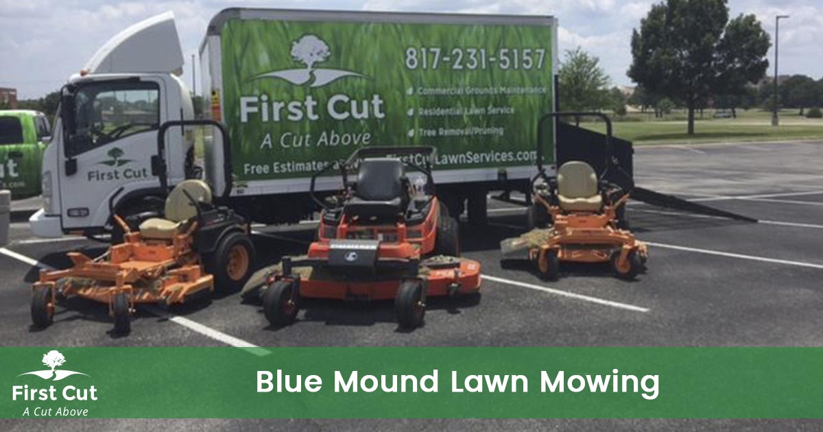 Lawn Mowing Service in Blue Mound Texas