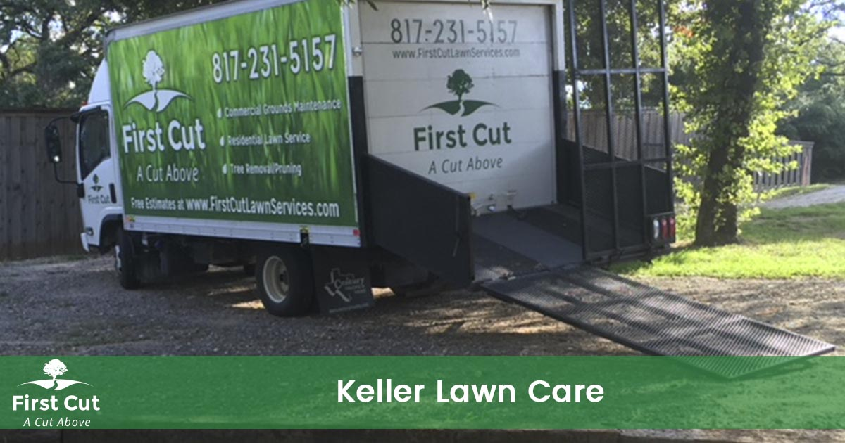 Lawn Care Service in Keller Texas