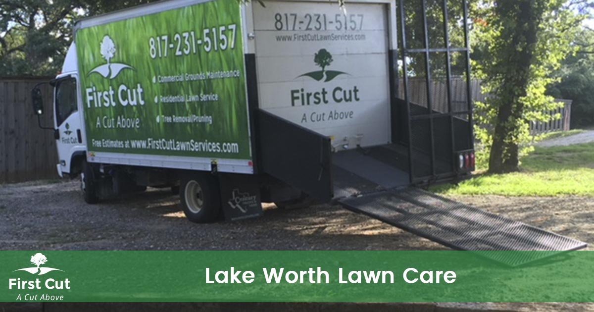 Lawn Care Service in Lake Worth Texas