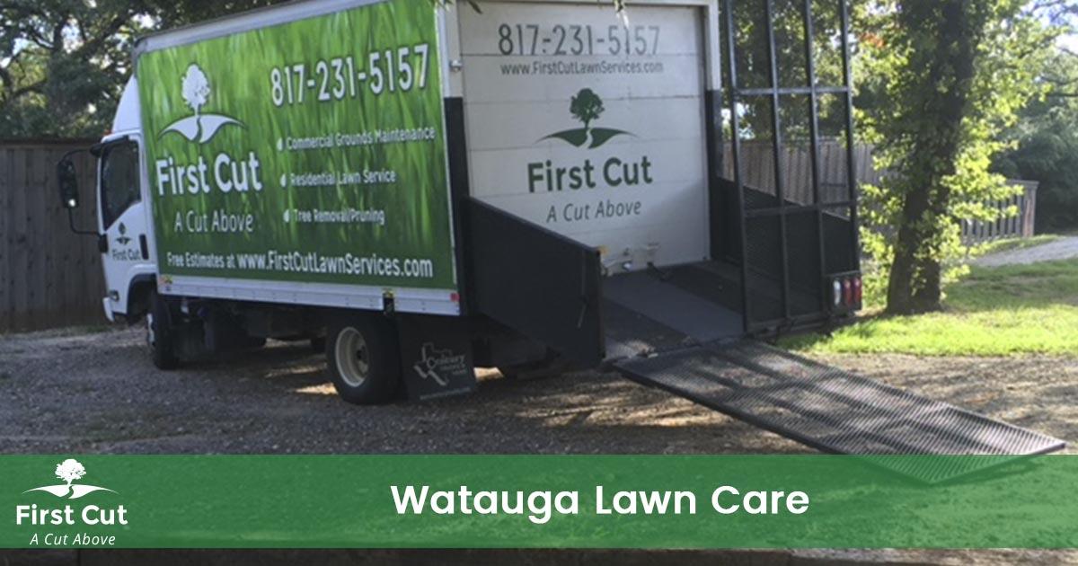 Lawn Care Service in Watauga Texas