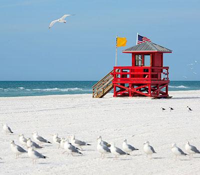 Beach Lifeguard Stand