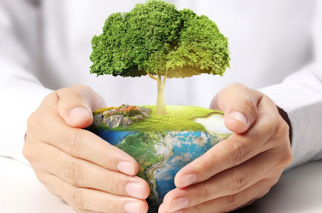 услугу по постановке на государственный экологический учет