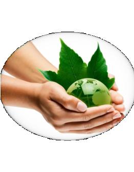 Акция по экологическому учету