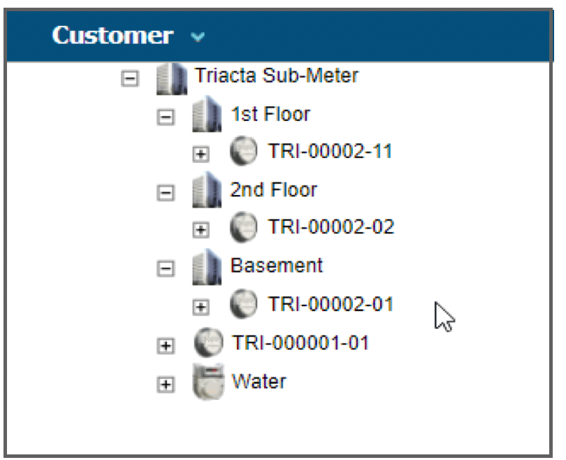 Software Screen Capture Showing Hierarchal Customer Tree