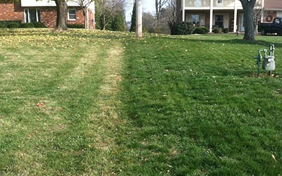 Lawn Service in Green Ohio