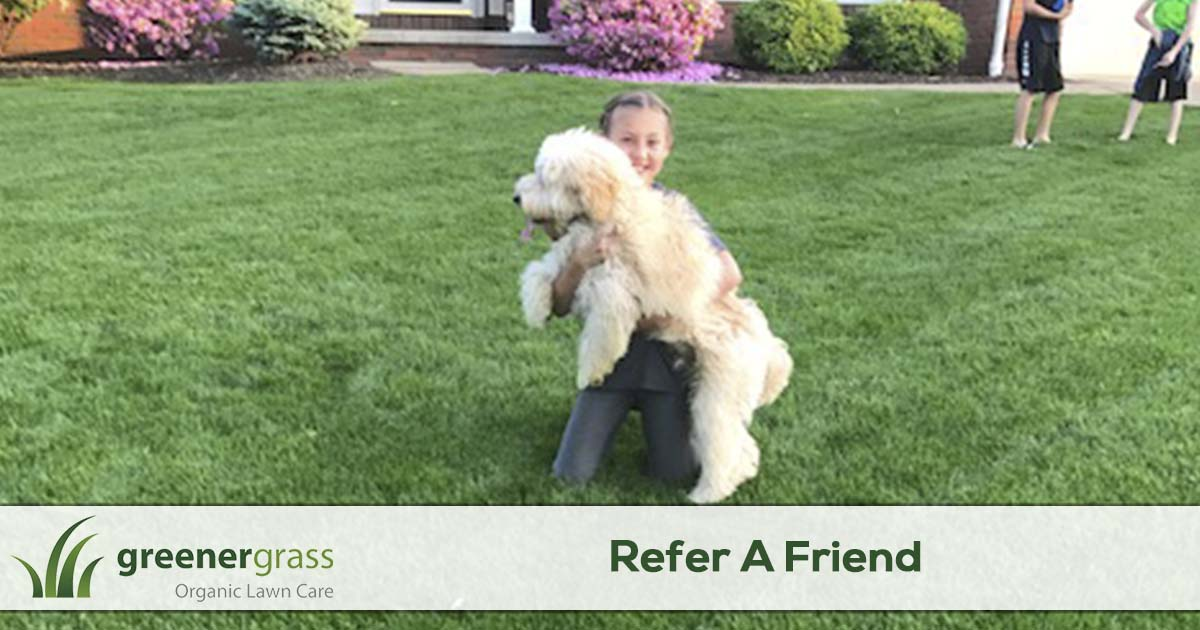 Refer a friend to Greener Grass