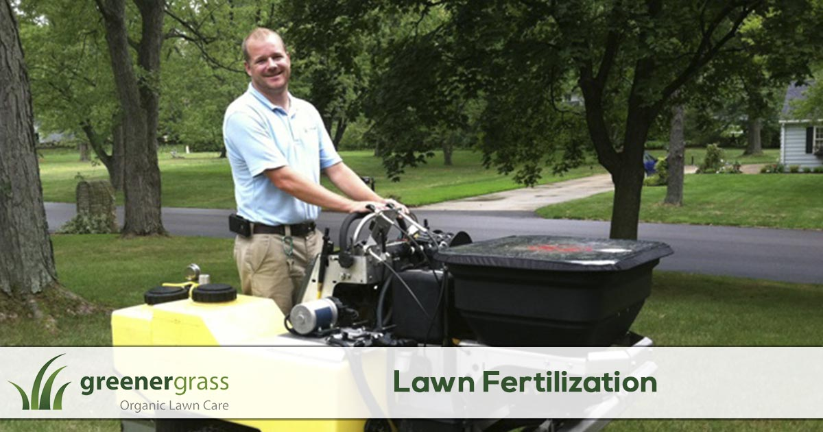 Lawn Fertilization Service in Canton, North Canton, and Green Ohio