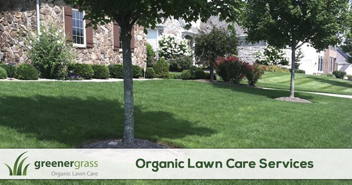 Organic Lawn Care Services