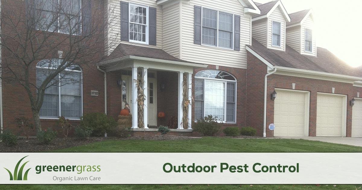 Home perimeter pest control service in Canton, North Canton, and Green Ohio