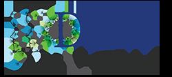 DFW Sinus Logo